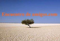 20111207222550-encuentramigos.jpg